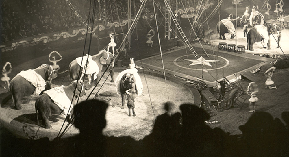 Circus act on stage