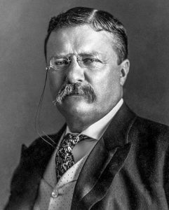 Theodore Roosevelt, 1901-1909, 26th Presdient of the U.S., by Pach Bros.
